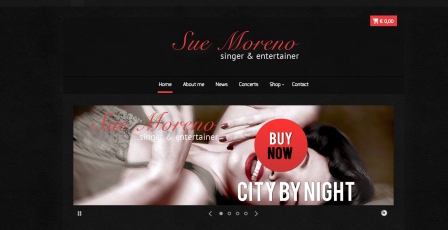 Launch of new website Sue Moreno